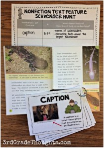Discover amazing tips, ideas and resources for teaching nonfiction lesson ideas for primary grades.