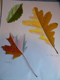 A list of wonderful Fall art activities which include elements such as color, texture, line and shape. These Fall art ideas are unique and fun!