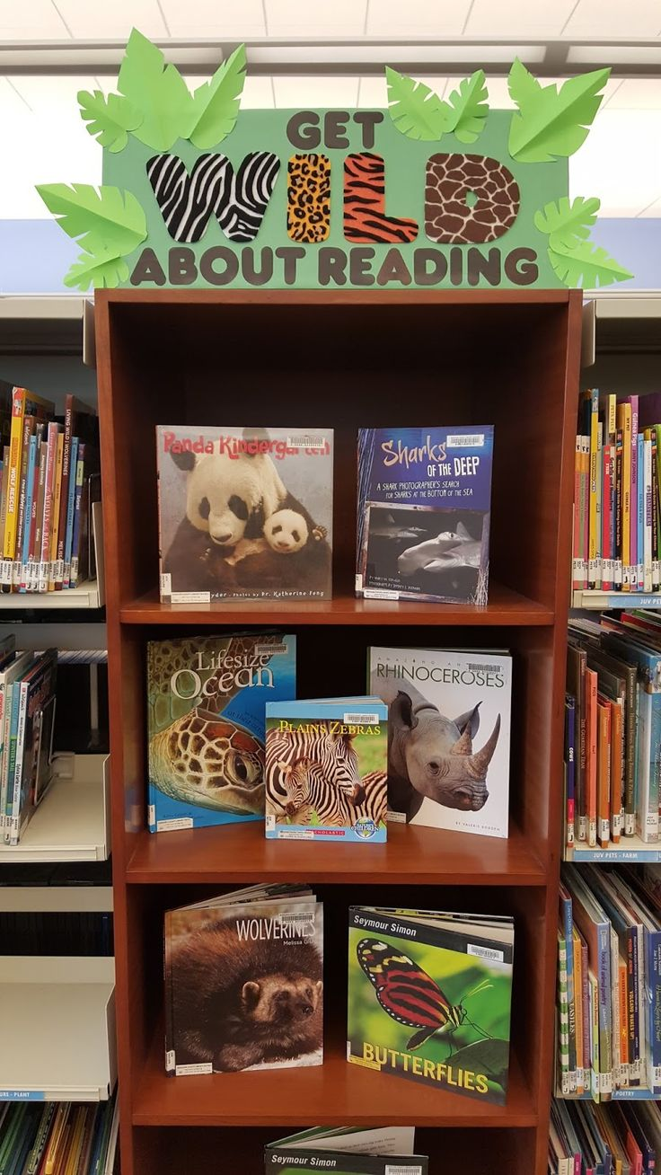 Classroom Library Ideas ~ Top classroom reading displays my everyday