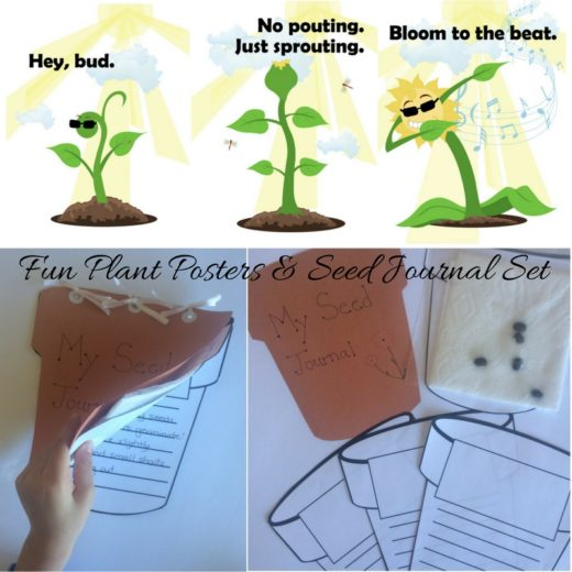 Fun plant posters & seed journal, perfect for a plant growth unit or Earth Day!