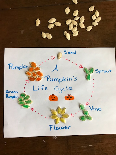 5 Fun Pumpkin Lessons For Kids